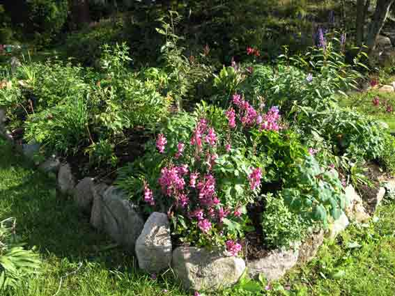 lage blomsterbed